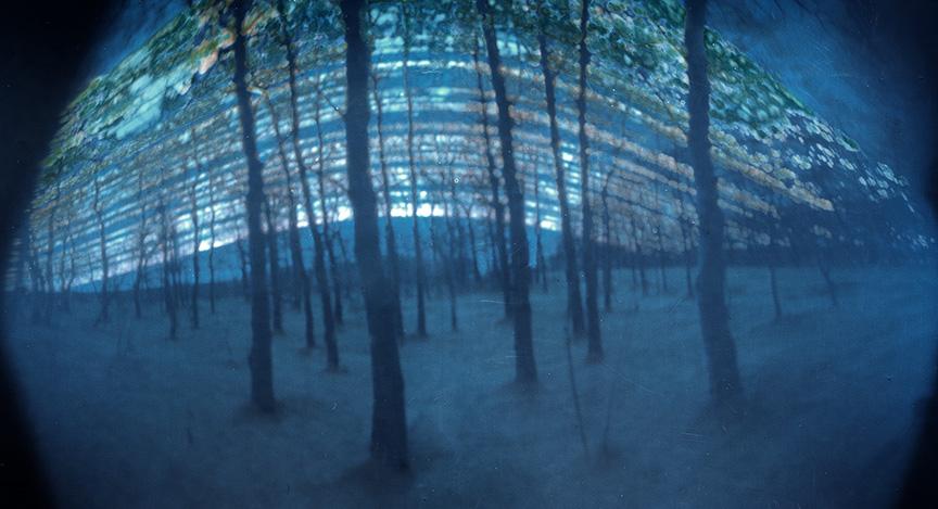 Leanne Elias image: 6 months of sun at timber ridge