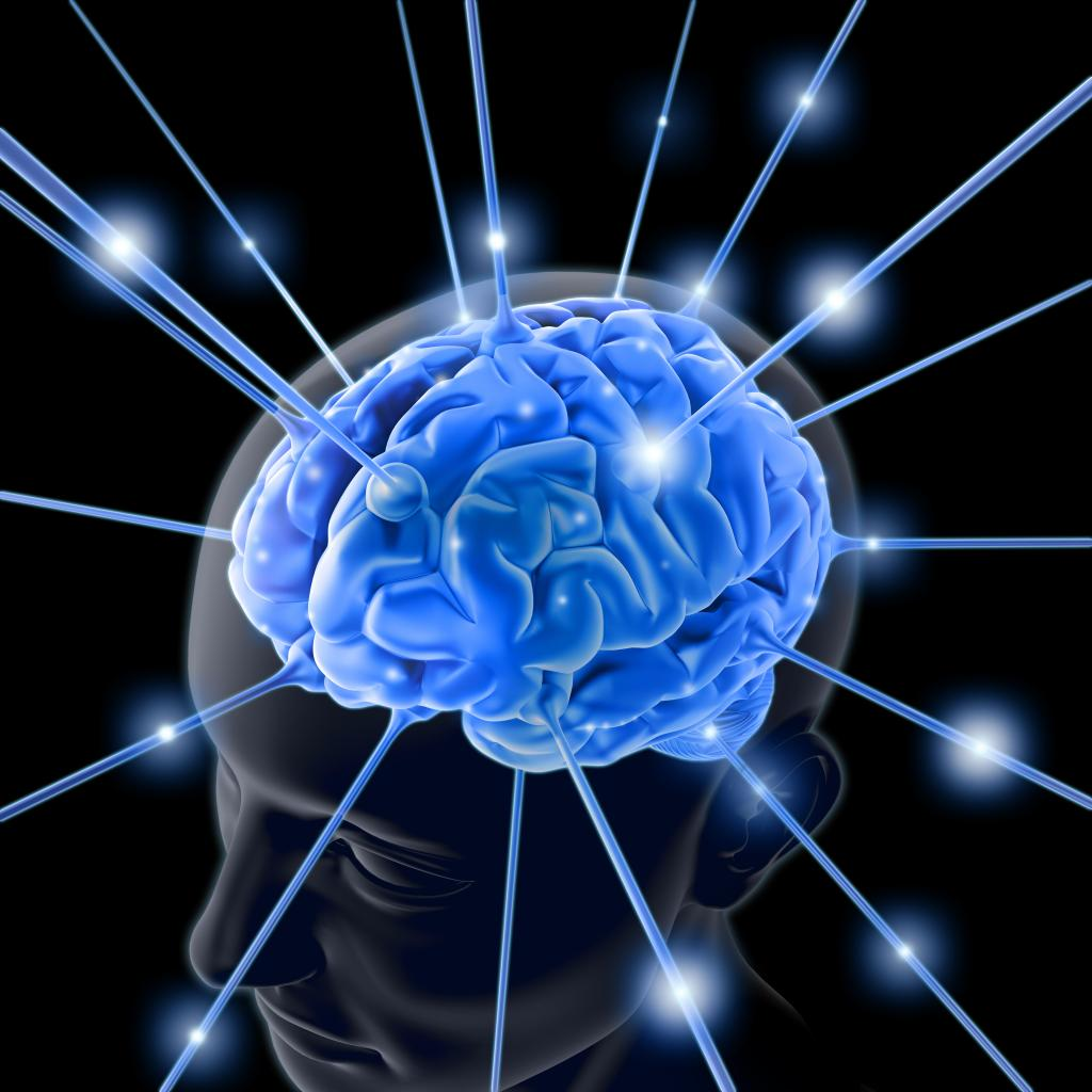 Bidang-bidang Penting Neurosains