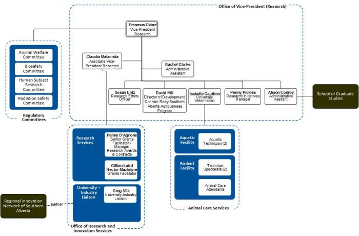 Office of VPR Organization Chart