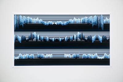 Digital print of webcam-captured data
