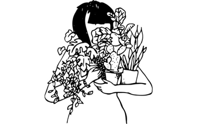 sill_soil_plant_girl_logo