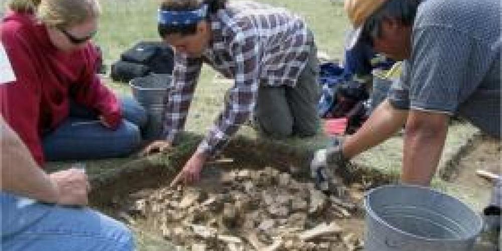 Bubel, Fincastle, Archaeology